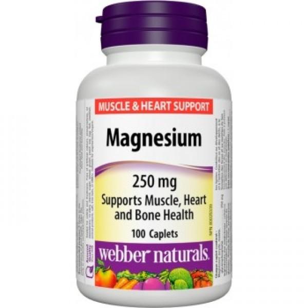 Magnézium 100tbl./250mg